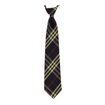 Boys Uniforms: Ties