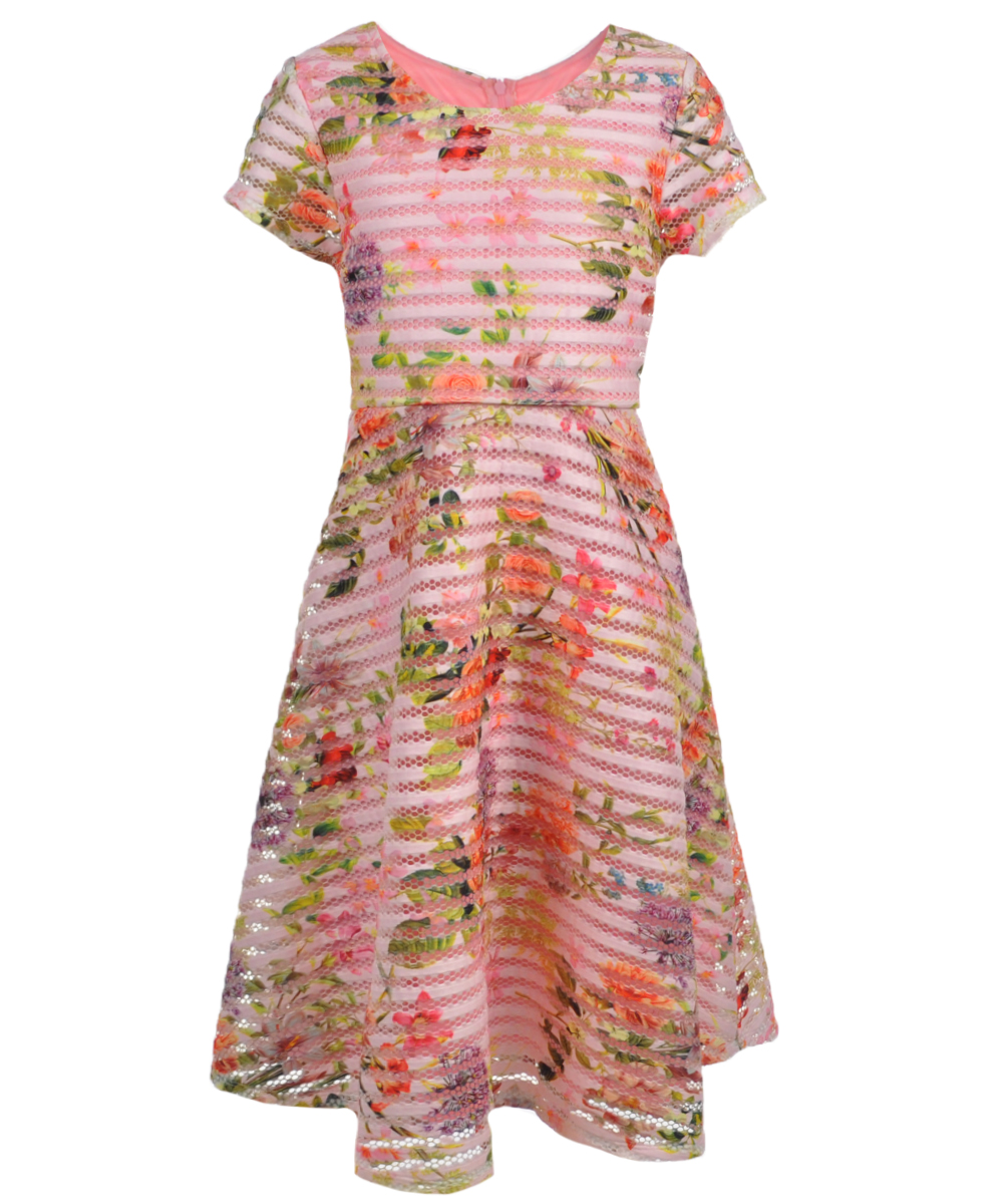 Image of Bonnie Jean Big Girls Plus Size Punchbowl Dress Sizes 14C  20C  pink 16.5