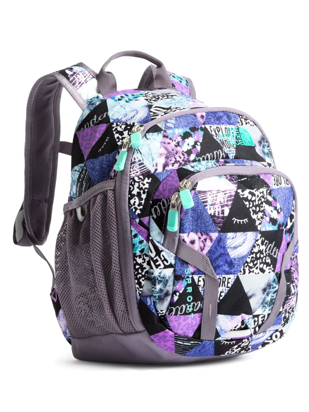 24ac3ffe5 The North Face Youth Sprout Backpack