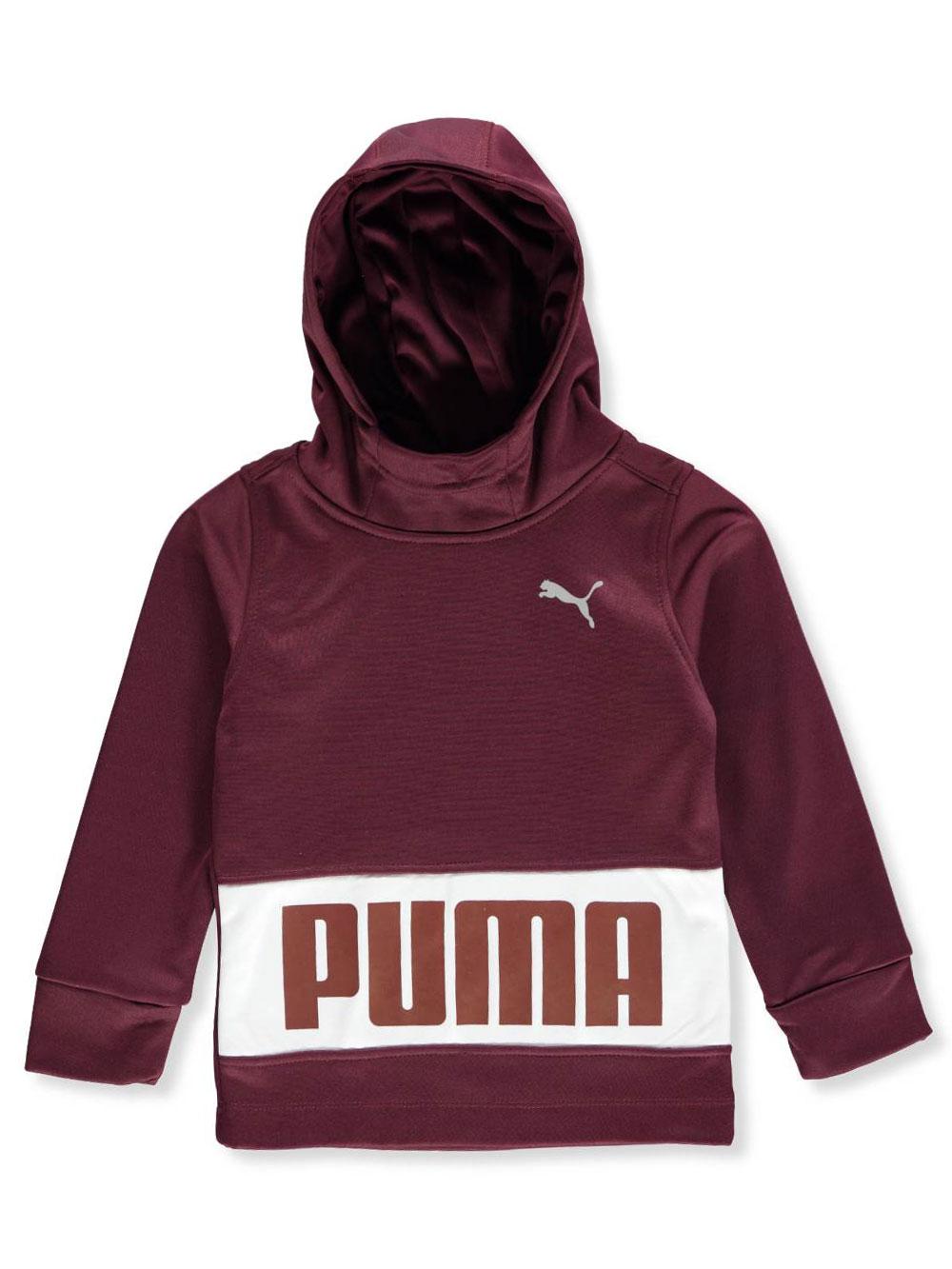 2e4529308 Puma Boys  Hoodie