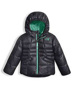 The North Face Little Girls' Toddler Moondoggy 2.0 Jacket (Sizes 2T – 4T) - CookiesKids.com